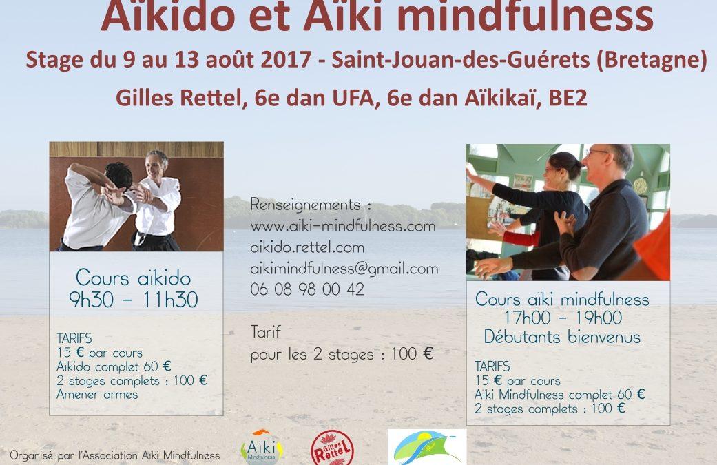 Stage aïkido été 2017